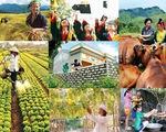 Kiện toàn BCĐ Trung ương về giảm nghèo bền vững