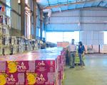 Sáng kiến thúc đẩy doanh nghiệp sản xuất trong điều kiện bình thường mới