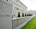 Liên minh châu Âu kêu gọi nhanh chóng lựa chọn lãnh đạo mới cho WTO