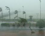 Năm 2020, đề phòng sự xuất hiện trở lại của siêu bão