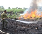 Nguy cơ cháy rừng mùa nắng nóng vì đốt rừng làm nương rẫy