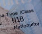 Tổng thống Mỹ Joe Biden hủy lệnh dừng cấp thẻ xanh - ảnh 1