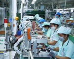 Bộ Chính trị kết luận chưa tăng lương cơ sở từ 1/7/2020