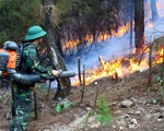 Cháy rừng mùa cao điểm nắng nóng: Phòng cháy rồi mới đến chống cháy