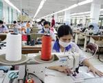"""""""Phòng bệnh hơn chữa bệnh"""": Cơ chế tài chính của Việt Nam trong ứng phó COVID-19 - ảnh 2"""