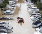 Lụt lội nhấn chìm hàng trăm ô tô và nhà cửa ở Hàn Quốc