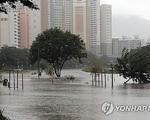 Mưa lũ gây thiệt hại tại Hàn Quốc, ít nhất 30 người thiệt mạng - ảnh 5
