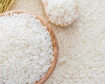 Hạt gạo Việt tại châu Âu: Khi 'ngon, bổ, rẻ' là chưa đủ!