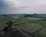 Khủng hoảng chồng khủng hoảng: Nhiều nông dân Ấn Độ tự tử trong đại dịch COVID-19