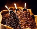 Vượt Brazil, cà phê Việt 'lên ngôi' tại Nhật Bản