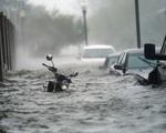 Bão Sally đổ bộ vào Mỹ gây ngập lụt nghiêm trọng