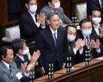 Ông Yoshihide Suga bắt đầu công việc trên cương vị Thủ tướng Nhật Bản - ảnh 1