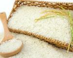 Xuất khẩu lô gạo đầu tiên vào EU theo EVFTA - ảnh 2