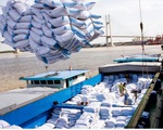 Gạo Việt đắt khách, giá tăng 12,4% - ảnh 2
