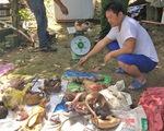 Phạt hơn 300 triệu đồng đối tượng nuôi nhốt, cấp đông nhiều động vật hoang dã