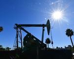 Giá dầu châu Á xuống mức thấp nhất kể từ tháng 7/2020