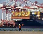 Lời giải nào cho cuộc khủng hoảng container rỗng? - ảnh 3