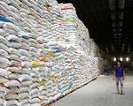 Lo thiếu container, doanh nghiệp xuất khẩu gạo 'đứng ngồi không yên'