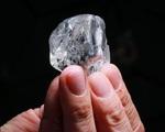 Viên kim cương hồng tím cực hiếm sắp được bán với giá 38 triệu USD - ảnh 1