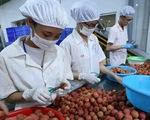 Quy định mới về nông sản Việt Nam vào Trung Quốc - ảnh 4