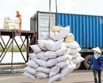 """Nghị quyết 128 gỡ """"nút thắt"""" thiếu lao động cho doanh nghiệp xuất khẩu gạo - ảnh 2"""