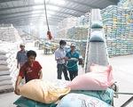 Giá gạo xuất khẩu duy trì ở mức cao