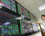 Thị trường chứng khoán trong nước rung lắc dữ dội