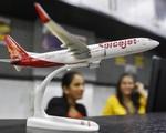 Hãng bay Ấn Độ mở dịch vụ... xét nghiệm COVID-19 giá rẻ
