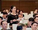 Công dân tự ứng cử đại biểu Quốc hội cần có những tiêu chuẩn nào?