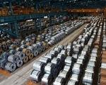 Ấn Độ không áp thuế chống bán phá giá một số sản phẩm xơ sợi staple nhân tạo Việt Nam - ảnh 1