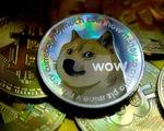 Cơn sốt tiền số Meme coin