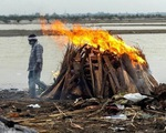 Thế giới có 161 triệu người mắc COVID-19, Indonesia nhiều ca nhiễm nhất Đông Nam Á