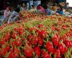 """Để xuất khẩu rau quả đạt 10 tỷ USD: Cần gỡ """"nút thắt"""" công nghệ bảo quản - ảnh 2"""