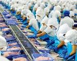 """Xuất khẩu mực, bạch tuộc sang Mỹ tăng """"phi mã"""" - ảnh 1"""
