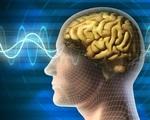 Kỹ thuật đột phá chuyển sóng não của người bị liệt thành lời nói