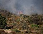 Tây Ban Nha: Cháy rừng dữ dội tại vườn quốc gia Cap de Creus, hàng trăm người phải sơ tán
