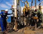 Nhu cầu dầu mỏ sẽ vượt mức trước đại dịch COVID-19 vào năm 2022 - ảnh 1