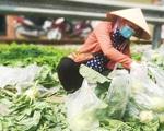 Chuỗi cung ứng nông sản phía Nam cơ bản được khơi thông - ảnh 3