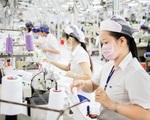 Xuất nhập khẩu nửa đầu năm tăng trưởng khá bất chấp dịch bệnh
