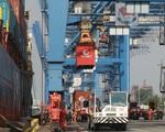 Bộ GTVT lập 2 tổ công tác tổng rà soát giá dịch vụ hàng hải - ảnh 1