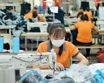 TP Hồ Chí Minh sẽ xây dựng bộ tiêu chí để khôi phục sản xuất - ảnh 1