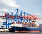 """Ngành vận tải biển lãi """"đậm"""" nhất trong 13 năm - ảnh 2"""