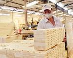 Xuất khẩu gỗ giảm mạnh - ảnh 3