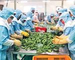 Cần giải pháp đồng bộ khôi phục sản xuất nông nghiệp các tỉnh phía Nam - ảnh 2