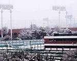 Nhật Bản chịu nhiều thiệt hại do mưa tuyết