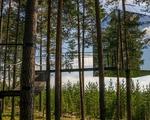 4 khách sạn trên cây kỳ thú nhất thế giới