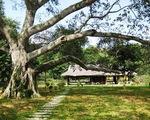 Quy hoạch di tích Tân Trào gắn có phát triển du lịch