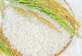 Rice exports faces challenges