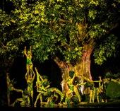 VTV True Concert trở lại: Chờ đón những thanh âm từ thiên nhiên