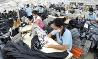 'TPP bring positive economic growth for Vietnam'
